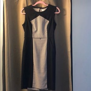Calvin Klein black and white suit dress size 4